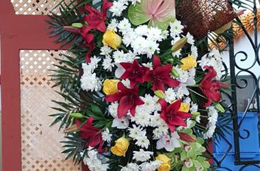 flores para romeria
